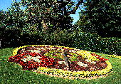 Flower clock:Geneva, Switzerland �X�C�X:�W���l�[�u�s���̉Ԏ��v
